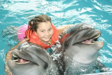 dophin encounter Curacao