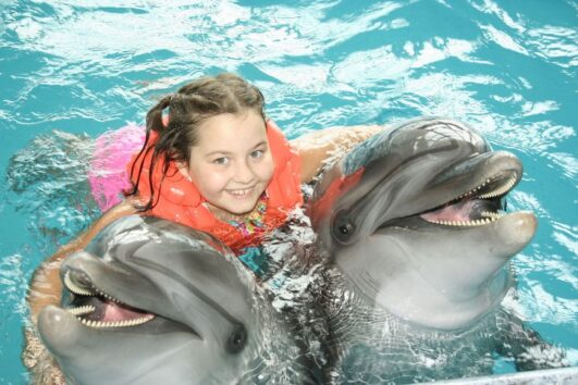 dophin encounter Curacao