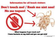 Information turtle