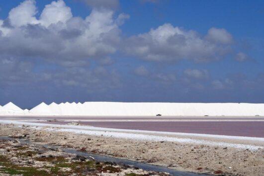 Bonaire Touren